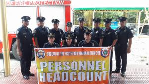BFP R3 Annual Personnel Headcount 2018